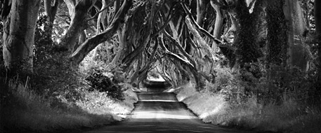 Fine Art Black and White Landscapes from Ireland